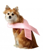 Pet Costume Pink Ribbon