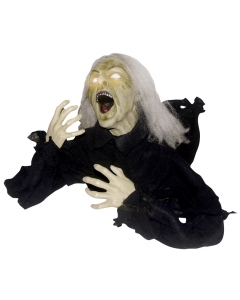 Groundbrker Head Turning Witch